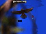 oiseau-libre.net