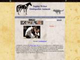 Ostéopathie animale (équin, canin,félin)