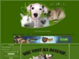 p-annonces-animaux.forumactif.info