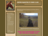 Pension equestre chantemerle