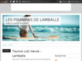 Les piranhas de Lamballe