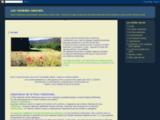 remedes-naturels.blogspot.fr