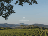 Domine Sainte Roseline : vin de Provence