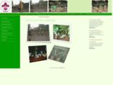 Scouts du <b>Cameroun</b>