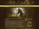 Siard Arabians