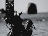 Stages d'équitation aux Ecuries de Jade