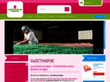 SweetShop Vente en ligne de confiseries