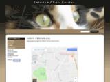 Chats et Chiens perdus, trouvés sur Talence