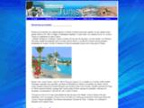 traveltunisie.com