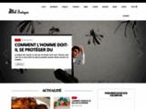 Web-Bretagne.com