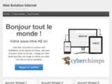websolutioninternet.com