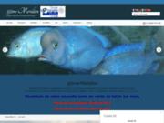 screenshot http://2018.35meridien.fr/ 35 Méridien