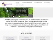 Plantes Lyon : Acanthe Déco