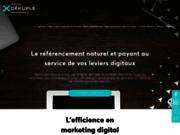 Activis, agence de référencement naturel multilingue