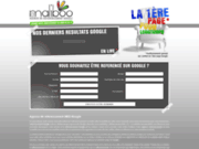 screenshot http://www.agence-referencement-google.com referencement professionnel google