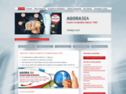 screenshot http://www.agora-sea.fr agora sea - cabinet d'expertise-comptable