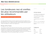 screenshot http://www.ake-boa-dieteticienne.com/ acide urique goutte regime goutte uricemie