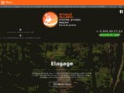 Élagueur arboriste à Charleroi - Allard Elagage