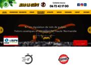 image du site https://www.allolaguepe.fr/