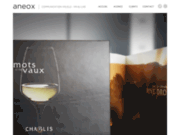 Aneox Solutions agence de design