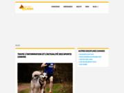 Ouverture d'un site de petites annonces animalières