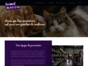 screenshot http://www.animalnutrition17.com accessoires pour chiens et chats