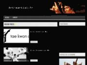 screenshot http://art-martial.fr art-martial