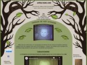 screenshot http://www.artisa-num.com/ idée cadeau exeptionnelle, originale et personnalisé