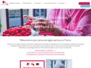 screenshot http://www.assystel.fr Assistance pour personnes âgées