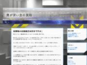 screenshot http://www.audialys.com voyance par email avec audialys