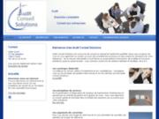 Audit Conseil Solutions