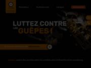screenshot http://www.auxidys.com auxidys conseil