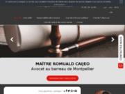 Avocat en droit administratif à Montpellier