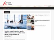 screenshot http://www.avocat-creteil.fr/ cabinet d'avocat à créteil - absil carminati tran