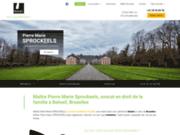 Avocat en droit de la famille à Beloeil, Bruxelles, Tournai