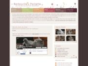 Barbouille-et-Paillette : British shorthair