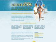 screenshot http://www.batucada-gringos.com/ batucada les gringos : percussions brésiliennes.