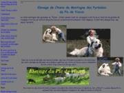 screenshot http://bcockenpot.free.fr elevage de chiens montagne des pyrénées du pic de viscos