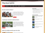 Blog aquariophilie