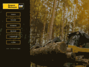 screenshot https://www.bm-cat.com/fr-fr/machines/mini-pelle-cat-1t-8t mini pelle