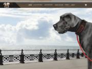 screenshot http://bonheursimple.fr Accessoires pour chien pas cher