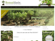 screenshot http://www.bonsaidasie.fr bonsai d'asie
