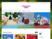 Bouquets d'objets. Fleuriste en ligne