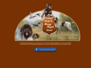 Bourg-Royal : élevage de Griffon Korthals et de Braque Allemand à Poil Dur