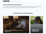 screenshot http://www.bouviers-bernois.fr bouvier bernois du jardin des muses