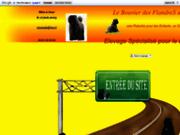 screenshot http://www.bouviersdesflandres-chiots.com bouvier des flandres chiots disponibles - chiots bouvier des flandres