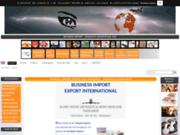 screenshot http://www.business-import-ltd.com business import export international