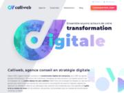 screenshot http://www.calliweb.fr calliweb - création de site e-commerce magento