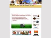 Annuaire Asie - Capasie.com