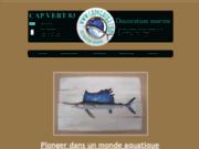 Trophées de poissons en résine - Cap Vert